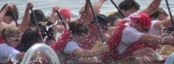 Bericht vom Drachenboot Festival Meilen 2013